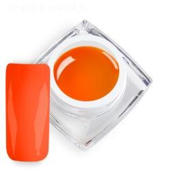Neon Orange 5ml
